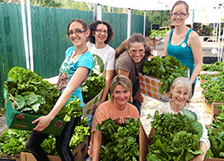 Ivan Stein - Foundation For Sustainable Living - Heavenly Farms Organic Food Co-op - Non-Profit
